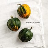 acornsquash2