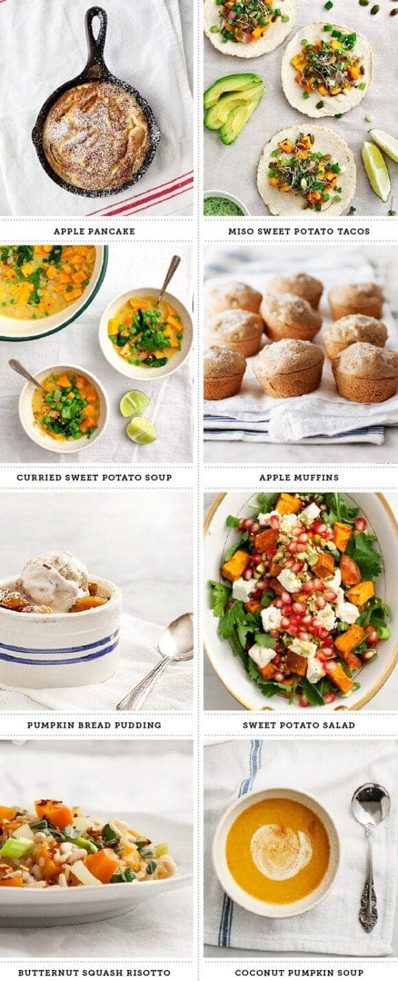 fall recipe roundup // loveandlemons.com
