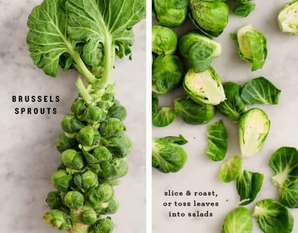 5 Favorite Veggies: Brussels Sprouts / www.loveandlemons.com