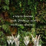 Williams-Sonoma_3477