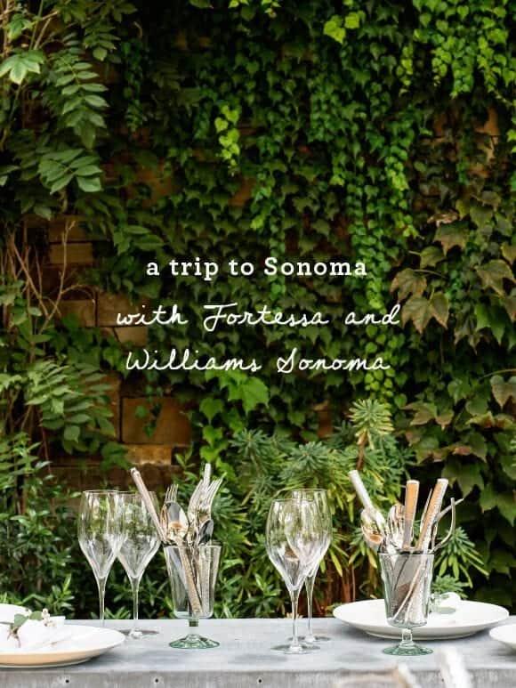 A trip to Sonoma / loveandlemons.com