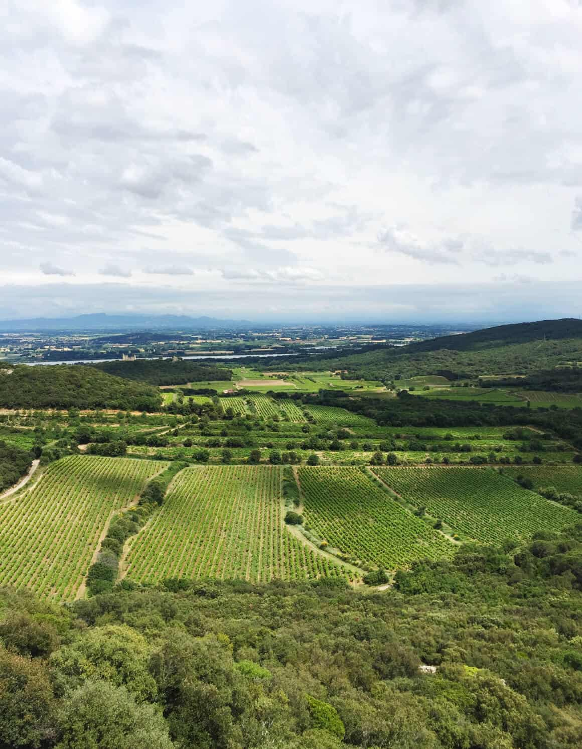 My Guide to the Rhone Valley, part II