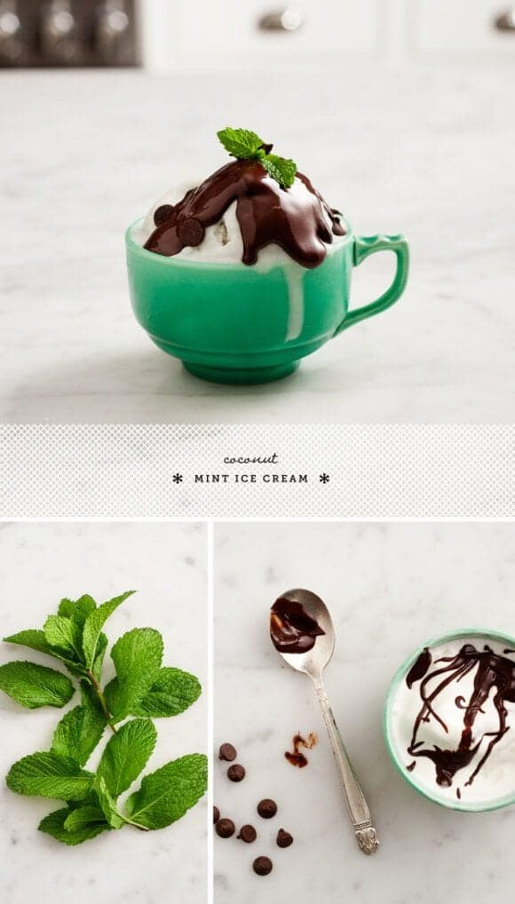 coconut mint ice cream / loveandlemons.com