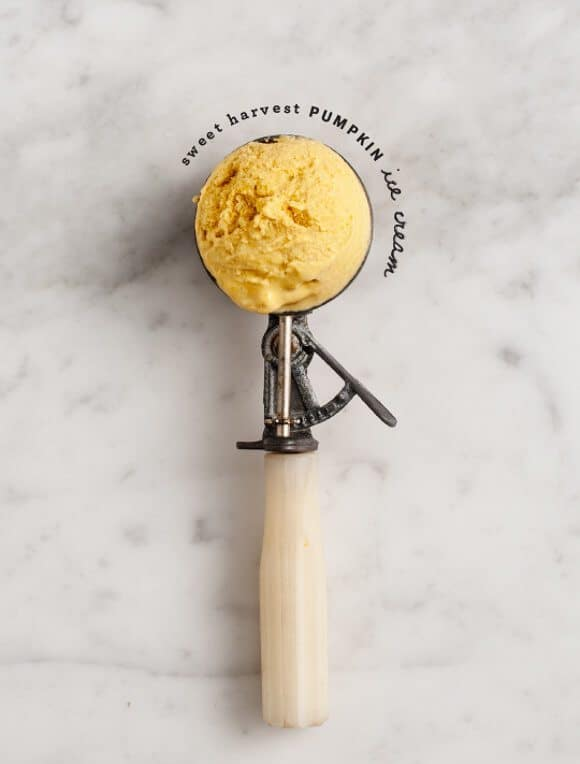 Sweet Harvest Black Tea Pumpkin Ice Cream / @loveandlemons #vegan