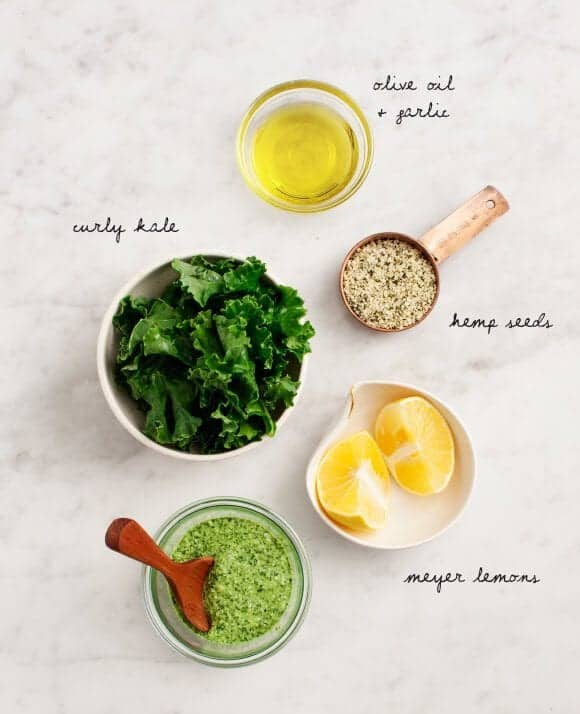 Kale & Hemp Seed Pesto