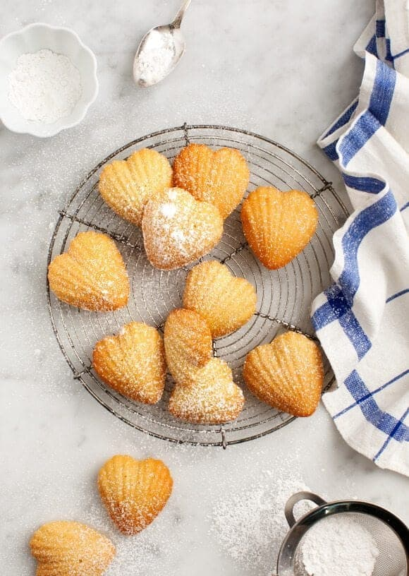 Meyer Lemon Madeleines