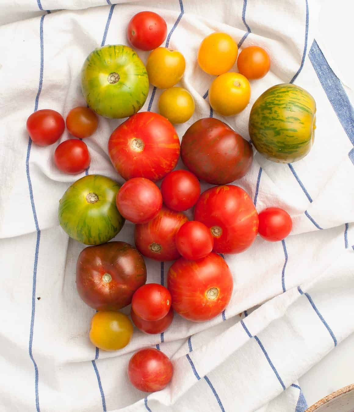 Tomato, Peach & Corn Panzanella